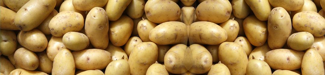 Kopfgrafik Kartoffeln